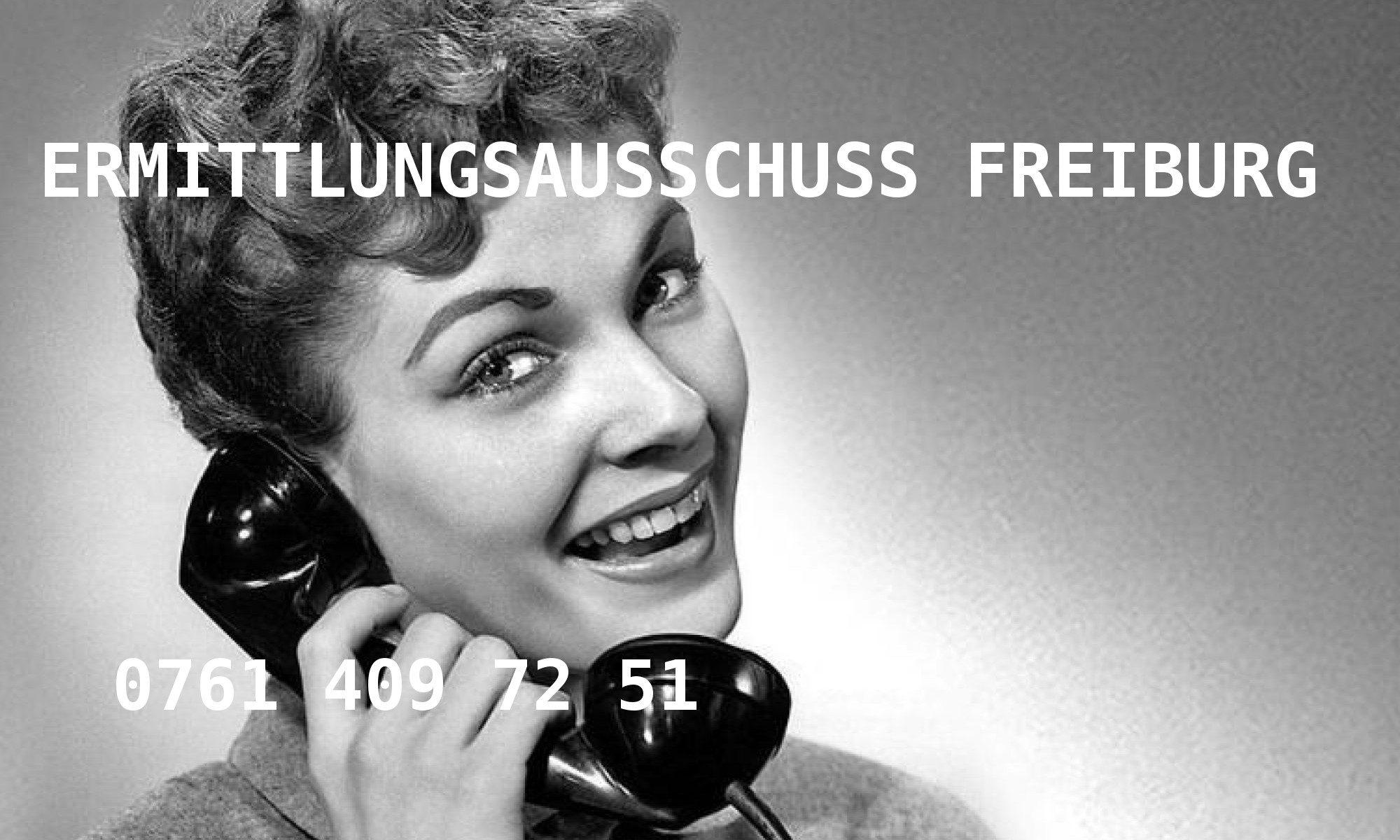 Ermittlungsausschuss Freiburg
